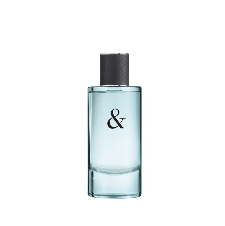 TIFFANY & CO TIFFANY & LOVE MEN EDT 90 ML