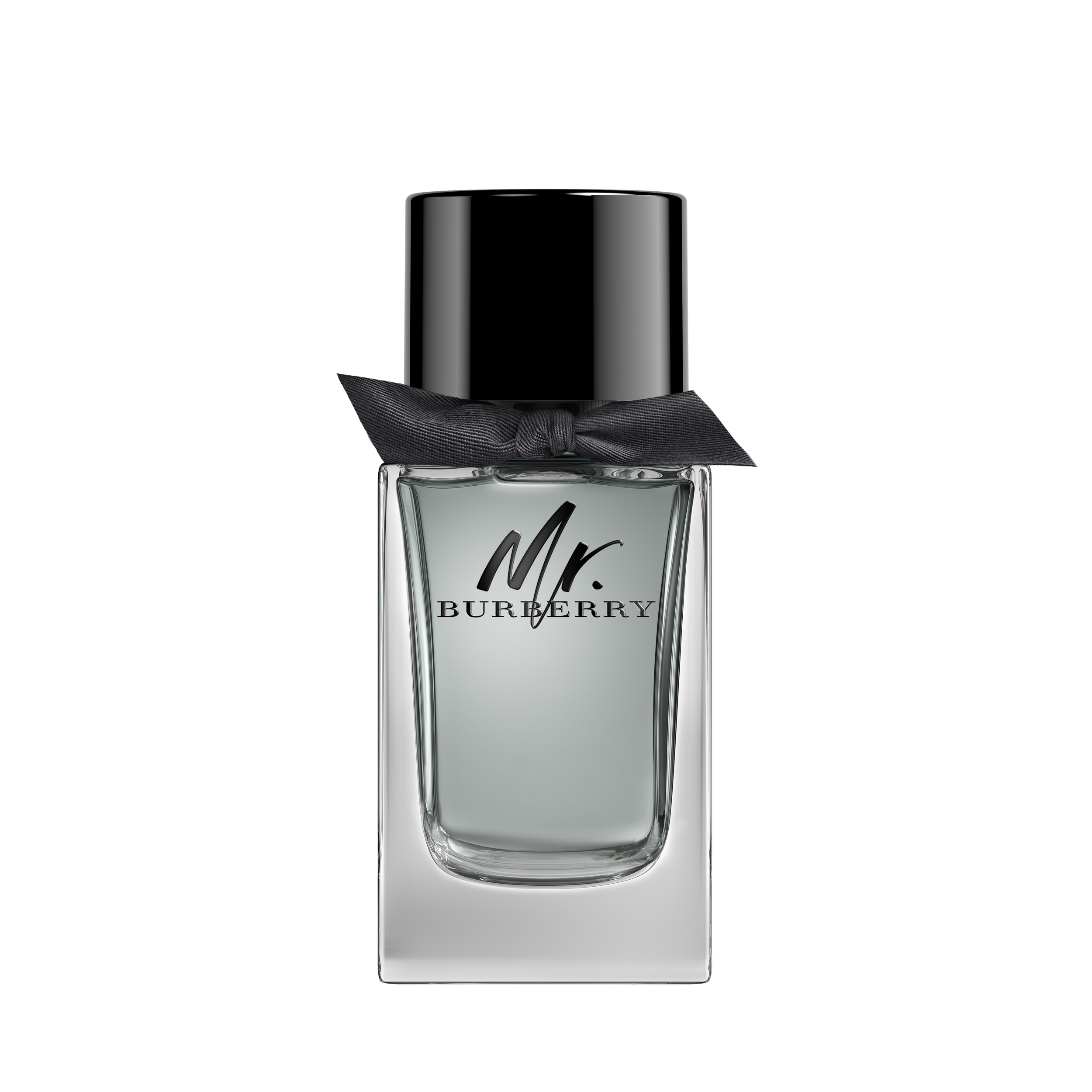BURBERRY MR. BURBERRY EDT 100 ML