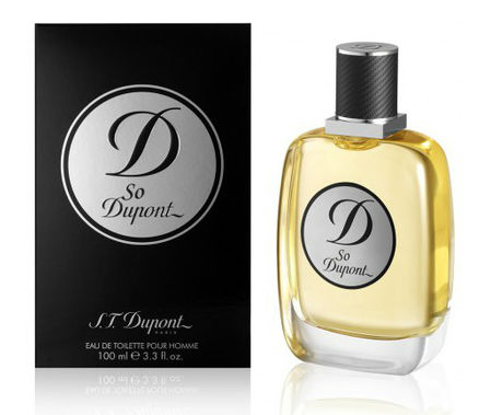 DUPONT SO DUPONT HOMME EDT 100 ML