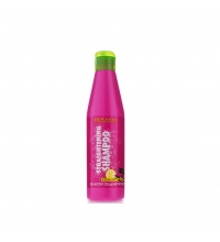 SALERM STRAIGHTENING CHAMPU 250 ML
