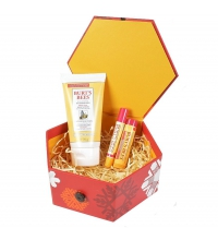 BURT´S BEES LOVE FROM NATURE (B/L P. NORMAL-SECA, B.LABIAL, BRILLO LABIOS) SET