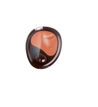 DEBORAH COLORETE BLUSH NATURAL SPICEY 04 6 GR